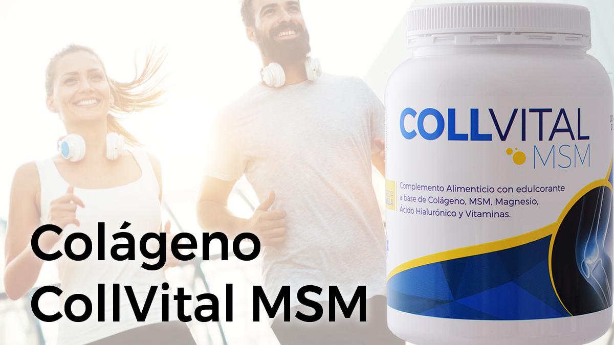 Colágeno Collvital MSM