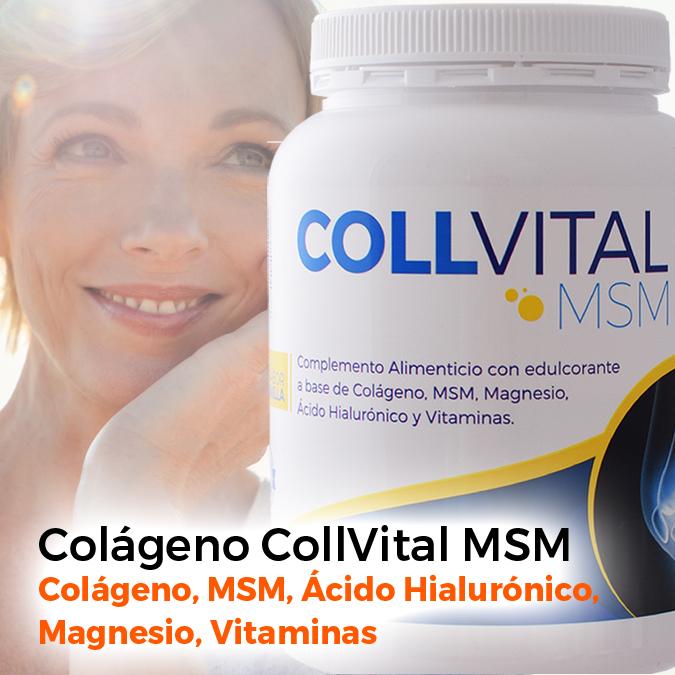 Vyfan Colageno MSM